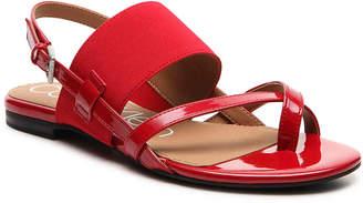 Calvin Klein Berry Sandal - Women's