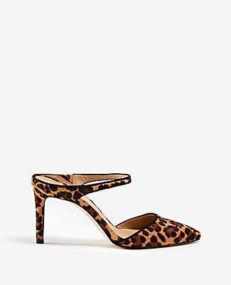 75659b5cc5f Ann Taylor Jodie Leopard Print Hair Calf Mule Pumps