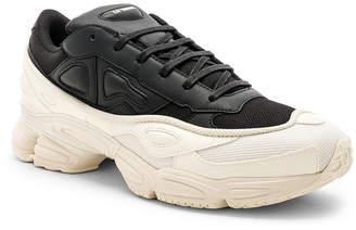 Adidas By Raf Simons Ozweego