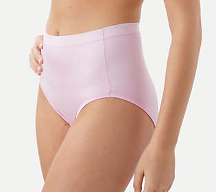 Breezies Set of 4 Nylon Microfiber Hi-Cut Panty