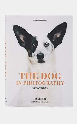 Taschen The Dog In Photography: 1839 - Today