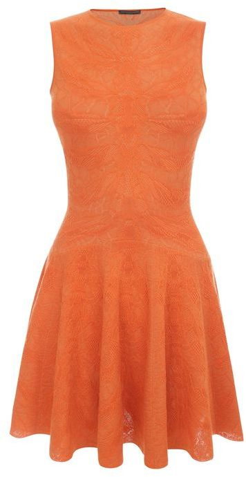 Alexander McQueen Dragonfly Spine Lace Jacquard Circle Mini-Dress