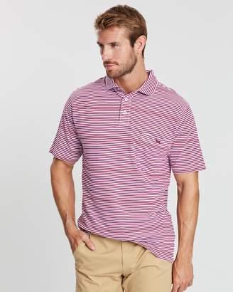 Torbay Short Sleeve Polo Shirt