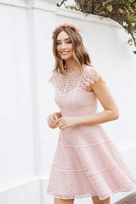 Forever New Womens Lace Skater Dress - Pink