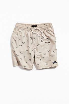 Barney Cools Seagull Swim Short