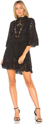 Nightcap Clothing Victorian Embroidered Mini Dress