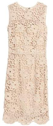 Dolce & Gabbana Cotton Guipure Lace Dress