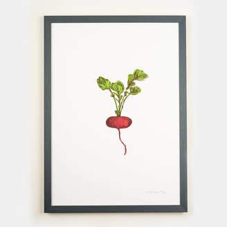 Lottie Day Red Radish Vegetable Framed Wall Art