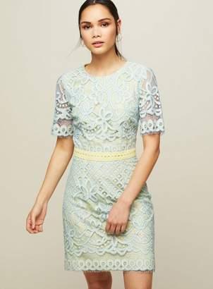 Miss Selfridge Lace mini bodycon dress