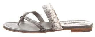 Manolo Blahnik Snakeskin Slide Sandals