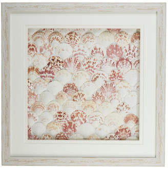 Twos Company Natural Fan Shell Wall Art in White Distressed Shadowbox Frame - Fan Shell/Ps/Glass/Cardboard