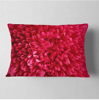 """Aster Designart Pink Flower Petals Close Up Floral Throw Pillow - 12"""" X 20"""""""