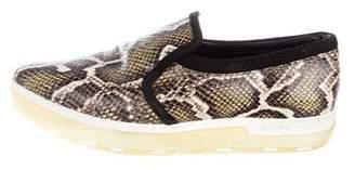 Jimmy Choo Snakeskin Pointed-Toe Slip-On Sneakers
