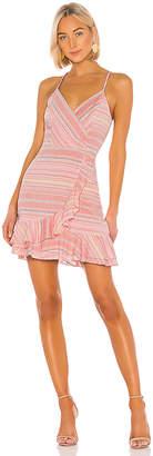 Parker Jay Dress