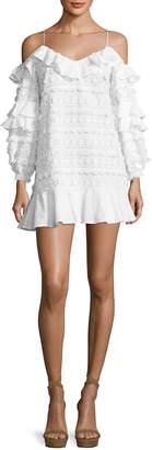 Alexis Calypso Cold-Shoulder Embroidered Dress