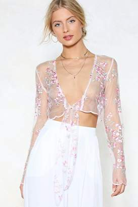 Nasty Gal You're Knot the Boss Mesh Crop Top