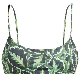 Reina Olga Stella Leaf Print Bikini Top - Womens - Green Multi