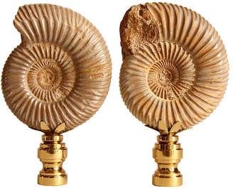 One Kings Lane Vintage Ribbed Ammonite Shell Lamp Finials - Set of 2 - Pythagoras Place