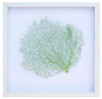 Karen Robertson Exotic Sea Fan - Key Lime