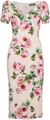 Dolce & Gabbana Rose print silk midi dress