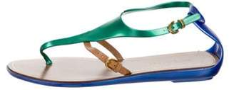 Sergio Rossi Capri Rubber Thong Sandals green Capri Rubber Thong Sandals