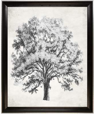 STUDY Art Virtuoso Arbor Canvas)
