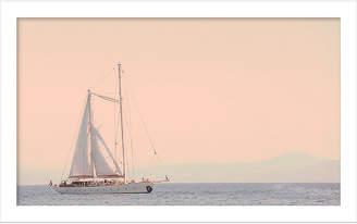 One Kings Lane Judith Gigliotti - Rosey Sailing Day Art