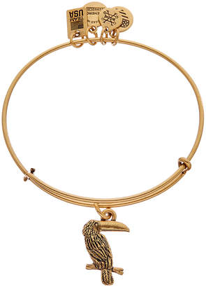 Alex and Ani Team Usa Toucan Expandable Bracelet