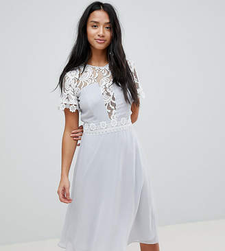 Elise Ryan Petite Midi Dress With Panels And Lace Detail