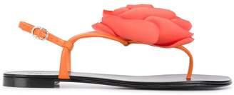 Giuseppe Zanotti flower detail sandals