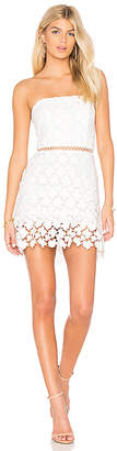 Karina Grimaldi Mona Lace Dress