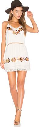 Tularosa London Slip Dress $148 thestylecure.com