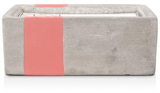 Paddywax Urban Concrete Rectangle Coral Salted Grapefruit Candle