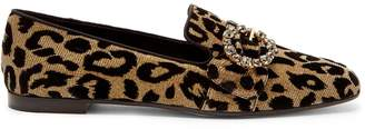 Dolce & Gabbana Crystal and leopard print-jacquard loafers