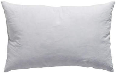 Wayfair Down Pillow Insert