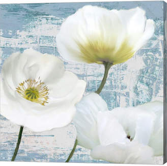 Leonardo Metaverse Washed Poppies- Aqua Ii By Sanna Canvas Art