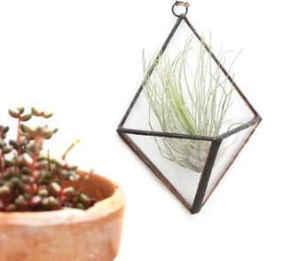 Glass Plant Terrariums Shopstyle Uk