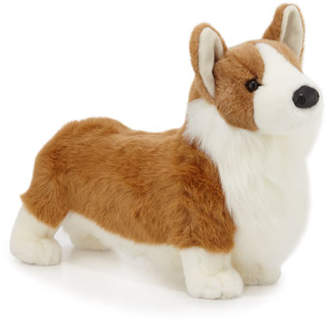 Corgi Douglas Chadwick the Stuffed Animal