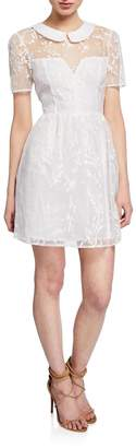 BCBGeneration Shirred-Sleeve Collared Fit-&-Flare Dress