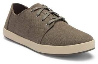 Toms Payton Canvas Sneaker