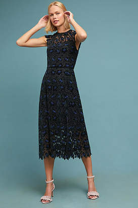 Shoshanna Nightingale Lace Dress