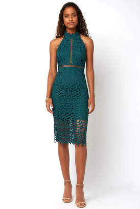 Bardot Gemma Sleeveless Halter Lace Dress