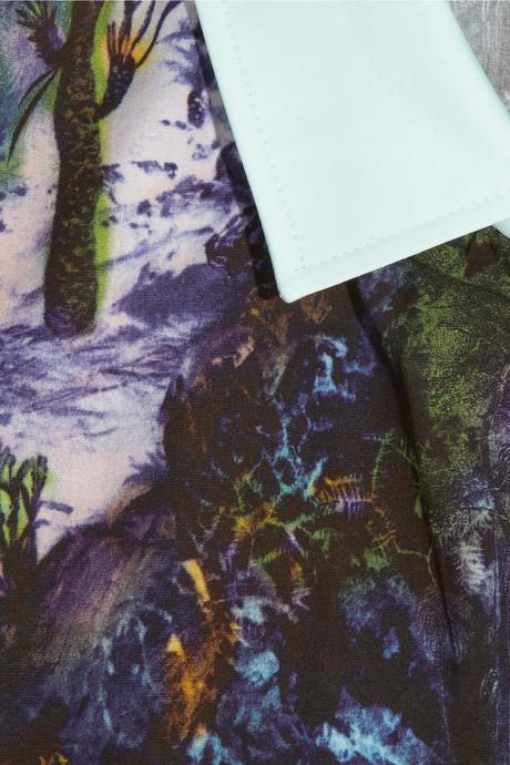 Carven Printed cotton-poplin shirt