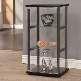 Coaster Company Glass Curio and Simple Black Frame