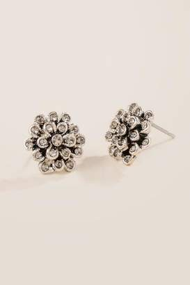 francesca's Elynn Crystal Flower Earrings - Crystal