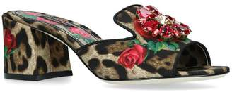 Dolce & Gabbana Leopard Print Rose Mules 60