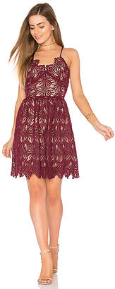 J.O.A. Fit And Flare Lace Dress in Burgundy $95 thestylecure.com