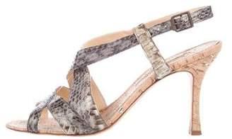 Manolo Blahnik Python Multistrap Sandals