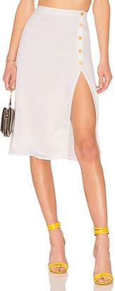 Privacy Please Burbank Skirt