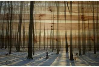 Parvez Taj Loon Peak 'Papineau' by Painting Print on Natural Pine Wood